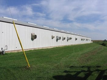 large poultry warehouse