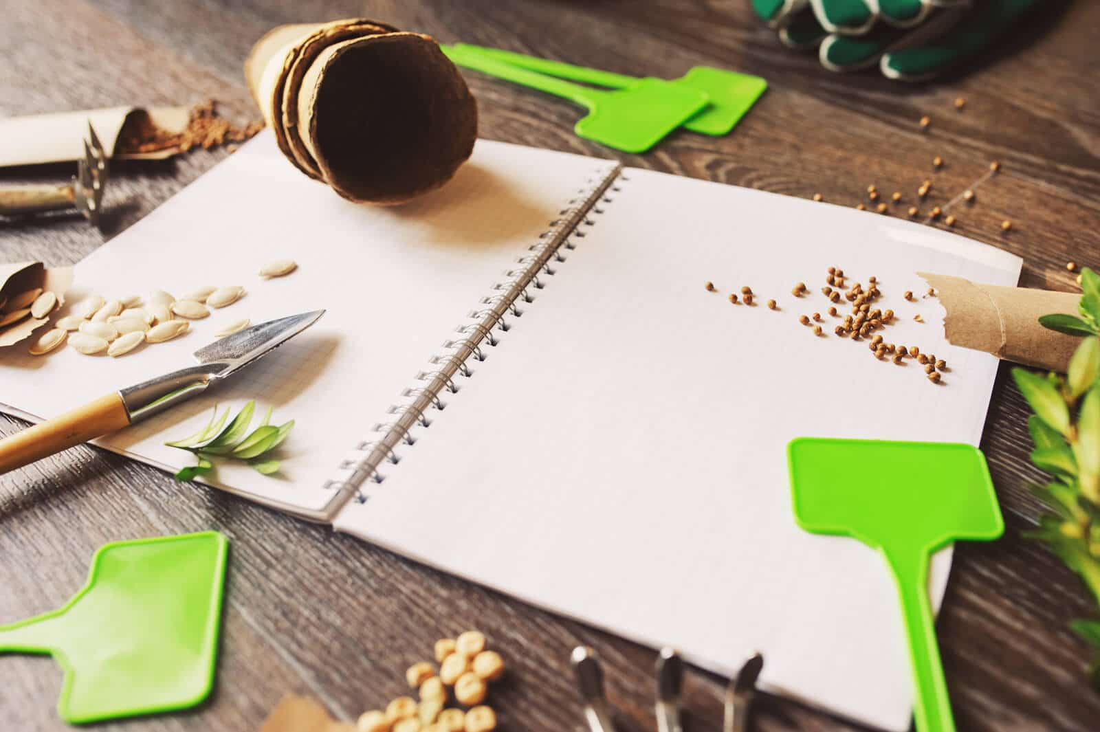 garden planning notebook and seeds on a table