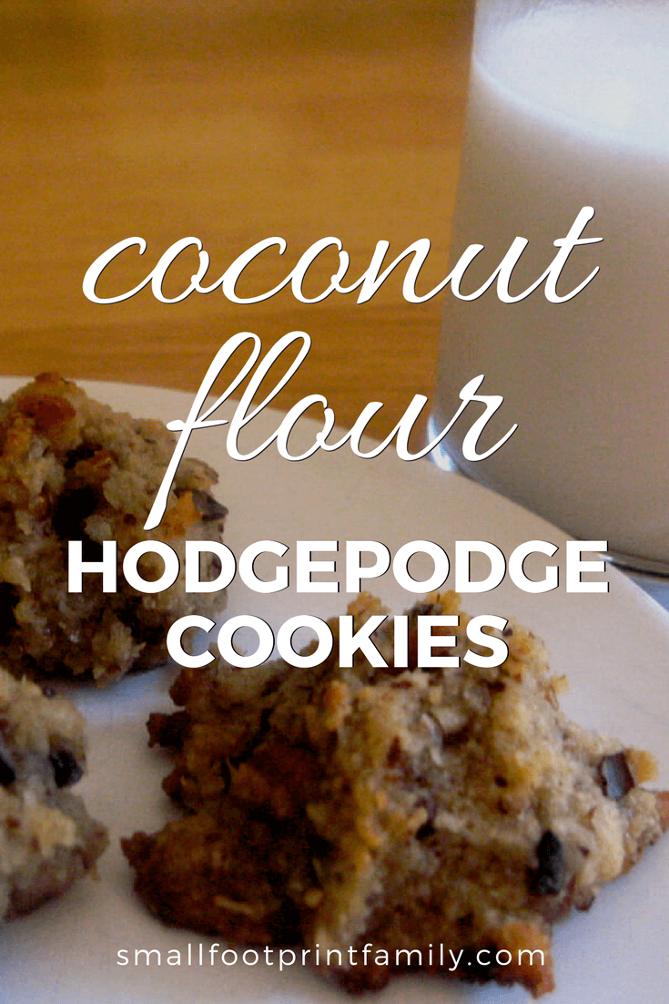 Old fashioned cookies and milk is a treat that many food-allergic families have to give up. But this grain free, coconut flour cookie recipe always satisfies!#paleo #paleodiet #glutenfree #dairyfree #vegetarian #recipe #grainfree #realfood #cookies #dessert