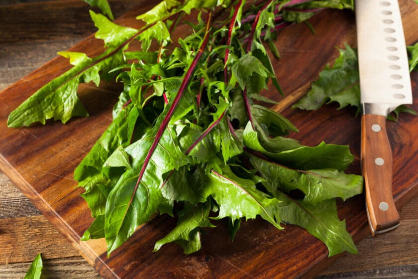 dandelion greens on a cutting board with a sharp knife