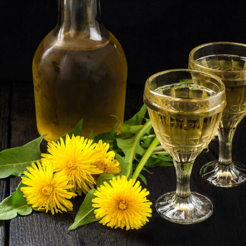 bottle of dandelion wine, fresh dandelion flowers and two glasses of wine
