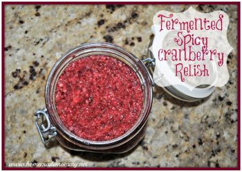 Fermented Spicy Cranberry Relish