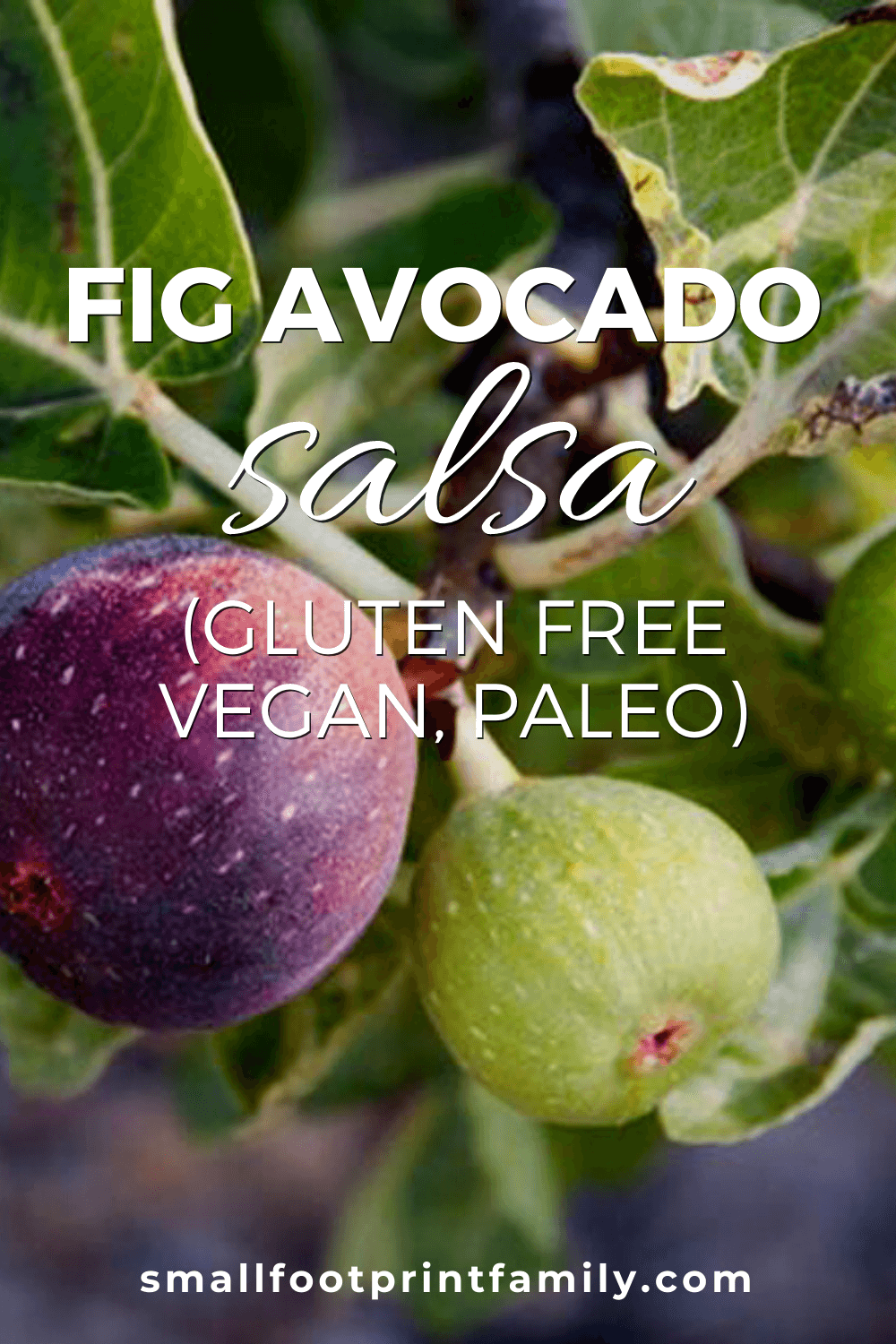 Figs are in season during mid to late summer. This Fig Avocado Salsa is a light refreshing spread perfect for raw veggies, chips, crackers, and sandwiches!#paleo #paleodiet #glutenfree #dairyfree #vegan #vegetarian #rawvegan #recipe #grainfree #realfood #condiment #figs