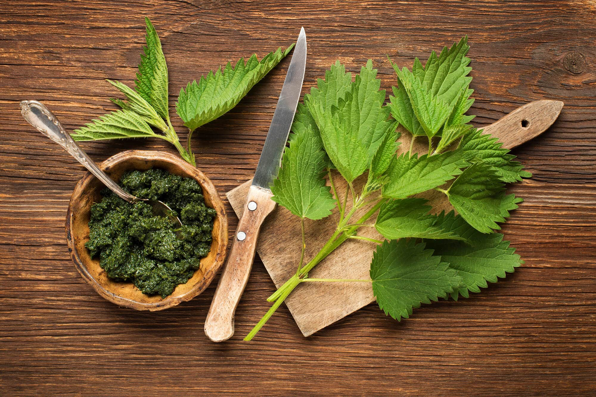 stinging nettles and nettle pesto on a wooden table with a cutting board and knife