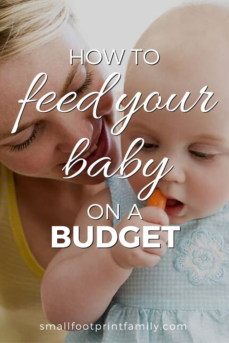 Most store-bought baby food contains yucky modified starches, corn syrup and other additives. Here's how to feed your baby healthy food on a budget.