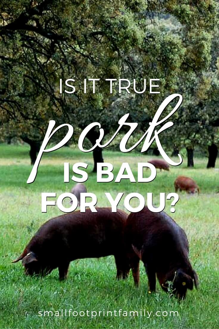 Is pork bad for you? Or is how healthy it is more a matter of how it is raised and prepared? This article will help you decide.#paleo #paleodiet #westonprice #foodismedicine #nutrition #realfood #pastureraised #localfarms #localfood #keto #healthyliving #naturalliving #organicfood