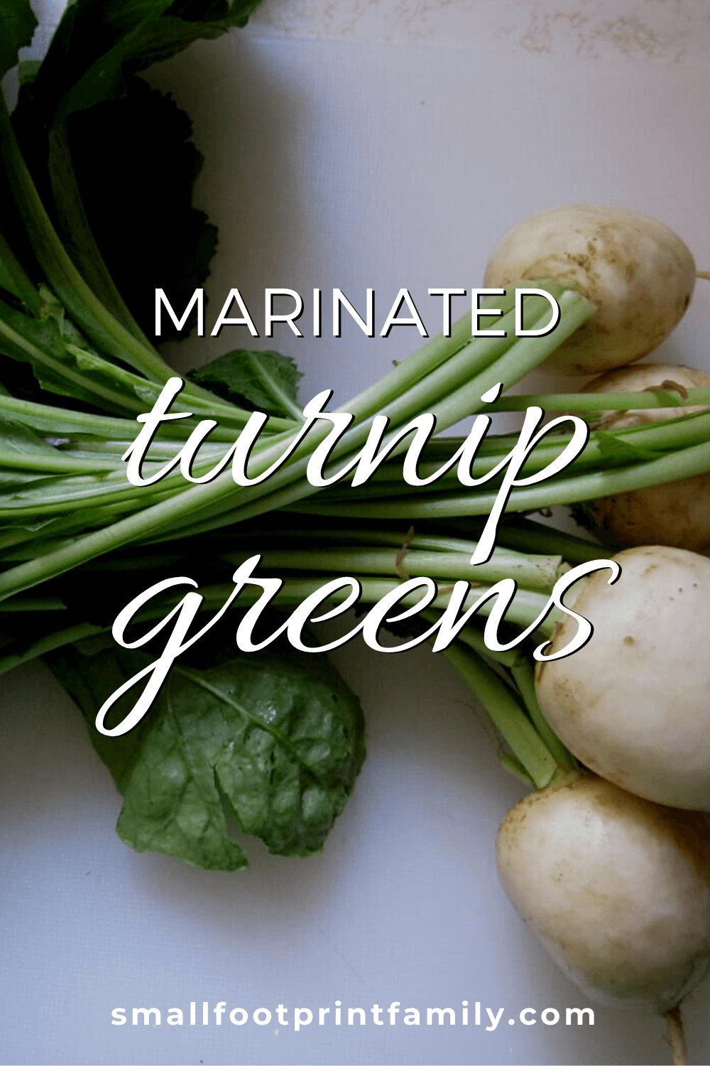 turnips with greens on a white countertop