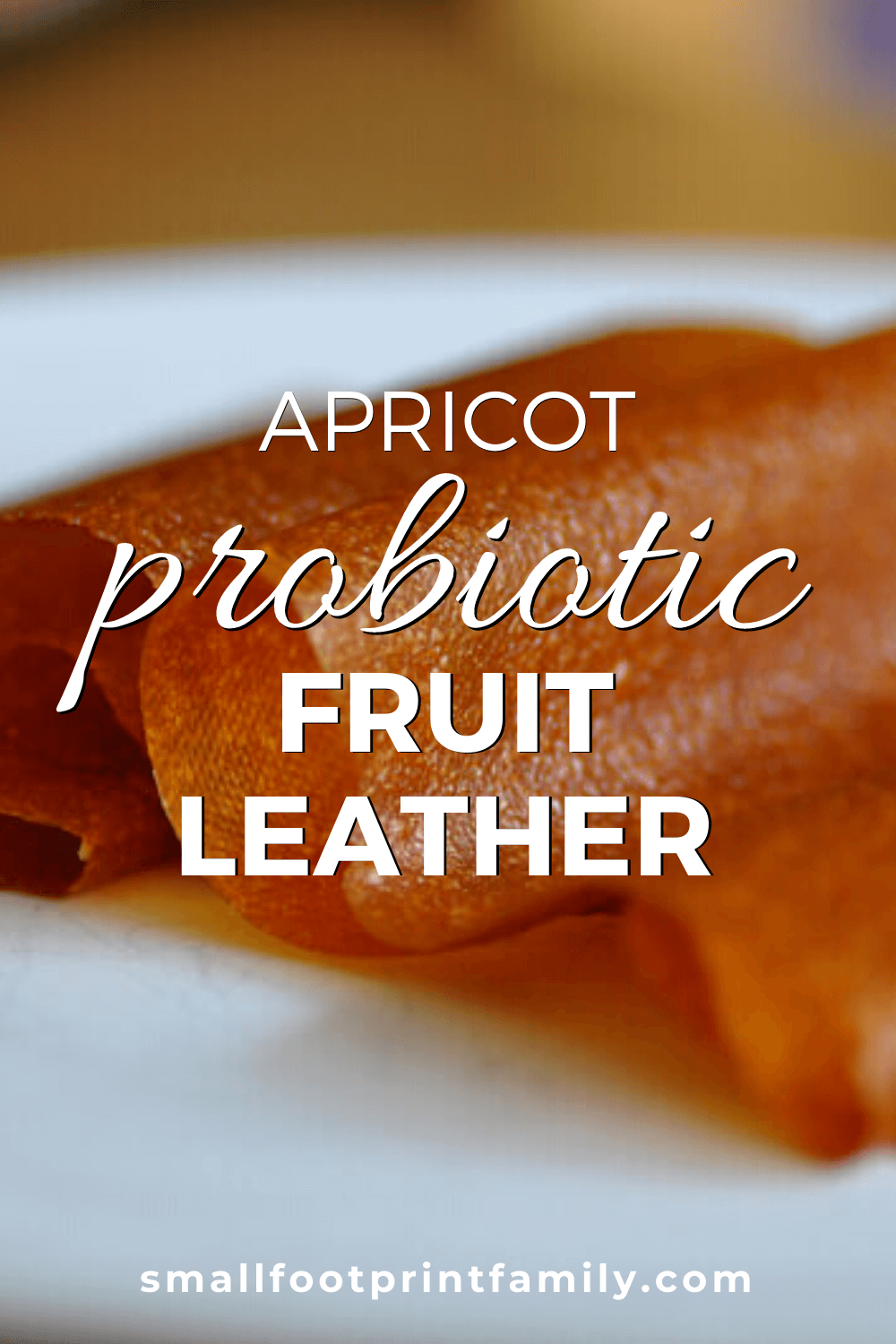 apricot fruit leather on a white plate