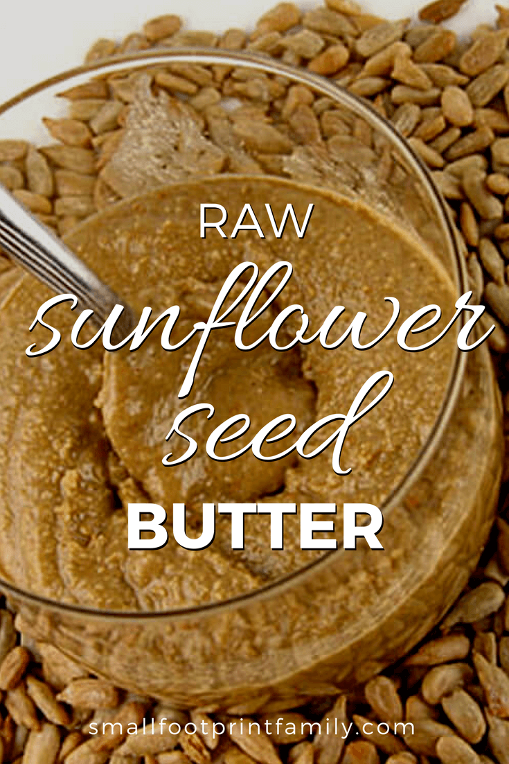 sunflower seed butter in a class bowl with a spoon on a bed of sunflower seeds