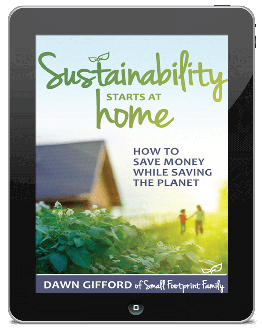 ipad cover for Sustainability Starts at Home