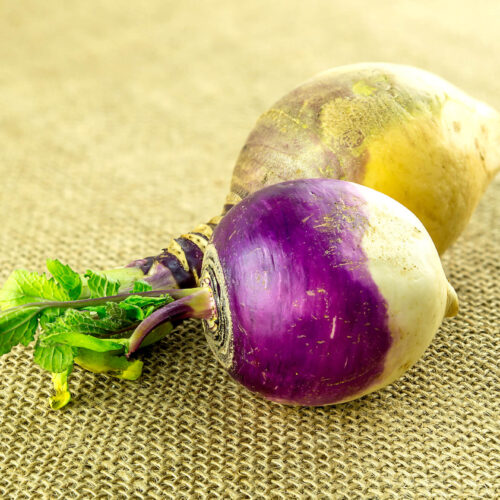 turnip and rutabaga on a burlap cloth on a table