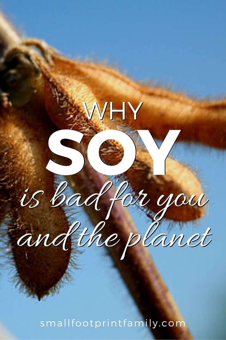 Despite the well-crafted, expensive PR campaign, soy is bad for you, and you need to know the havoc it has wrought on our health and the environment.#paleo #paleodiet #vegan #vegetarian #realfood #naturalhealth #naturalliving #foodismedicine #nutrition #greenliving #ecofriendly #sustainability #sustainableagriculture #soy #climatechange #nogmos #gmofree #organicfood