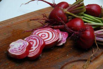 chiogga-beets