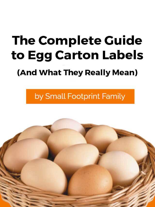 eggs-cover