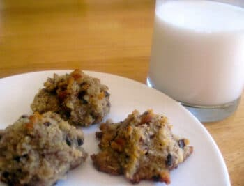 Old fashioned cookies and milk is a treat that many food-allergic families have to give up. But this grain free, coconut flour cookie recipe always satisfies!
