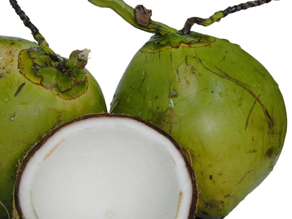 green-coconut-kefir