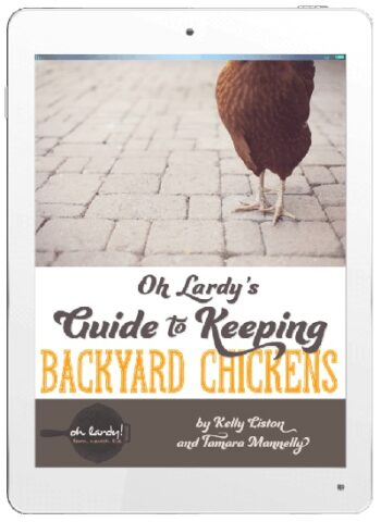 guide-to-backyard-chickens