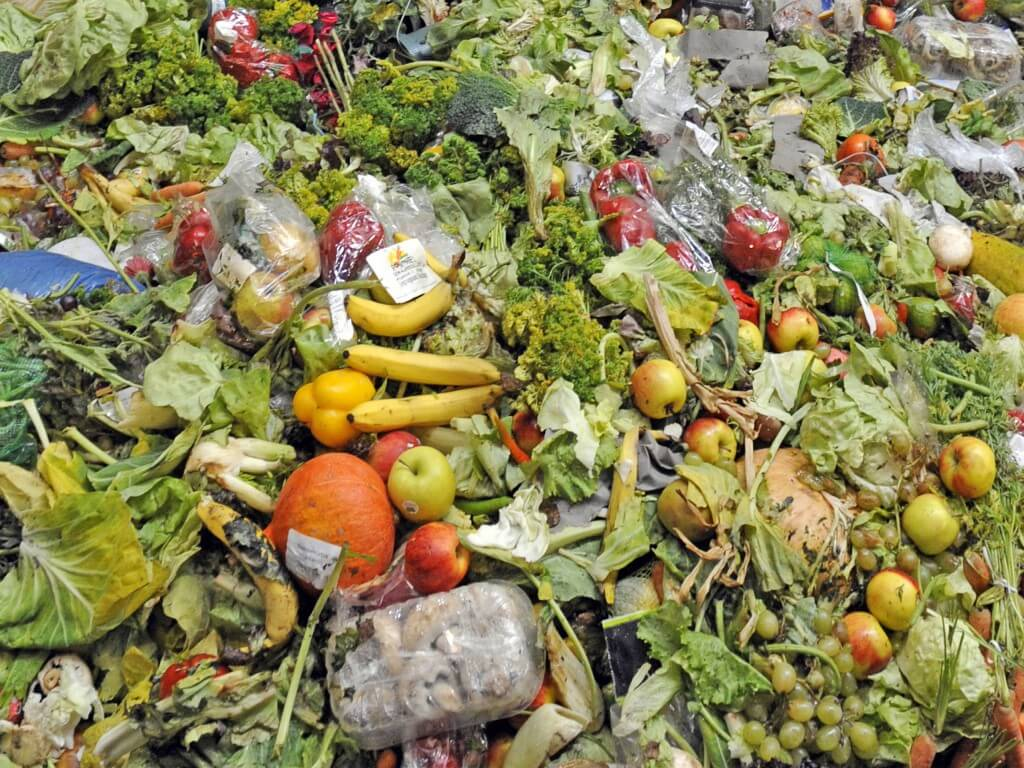 5 Ways We Can Stop Food Waste