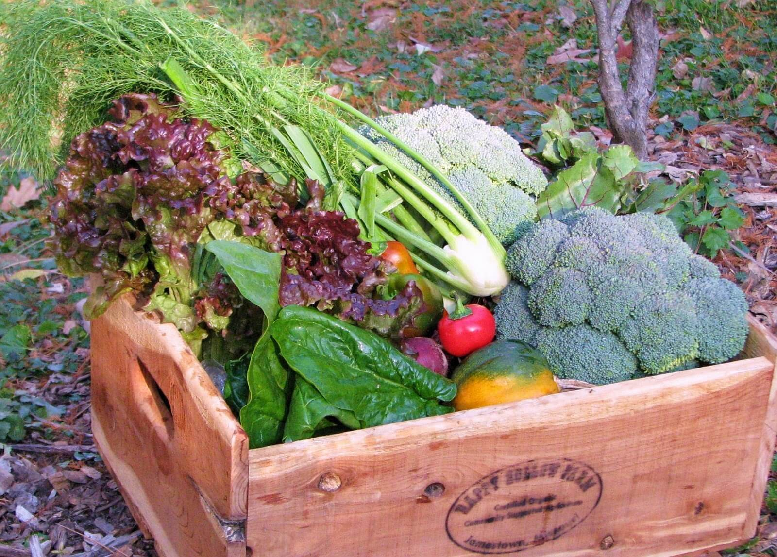 wooden box of fresh picked produce