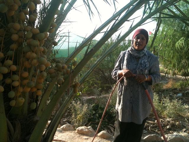 permaculture-jordan