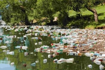 Why You Should Give Up Bottled Water for Good