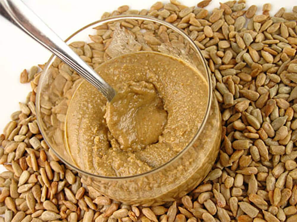 sunflower-seed-butter